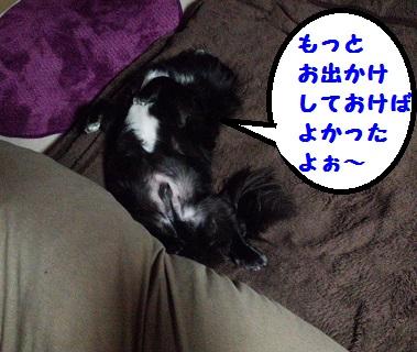 20131229mu7.jpg