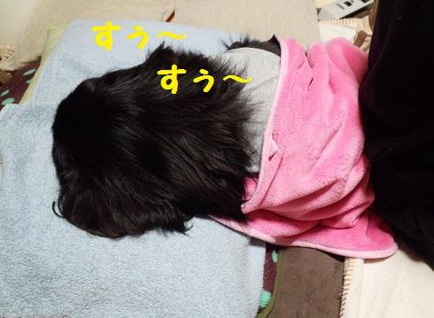 20140101mu8.jpg