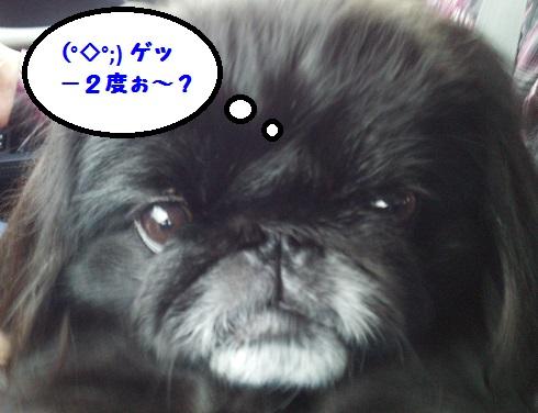 20140103mu4.jpg