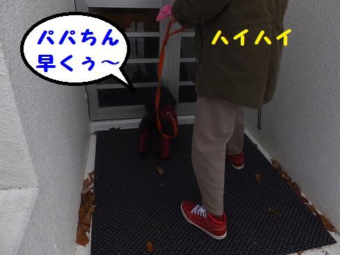 20140104mu8.jpg