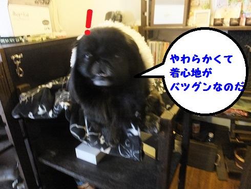 20140111mu3.jpg