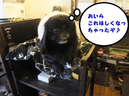 20140111mu4.jpg