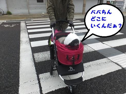 20140111mu8.jpg