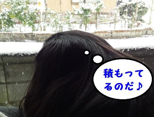 20140114mu1.jpg