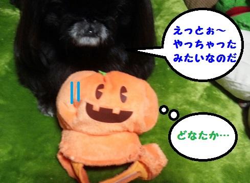 20140117mu2.jpg