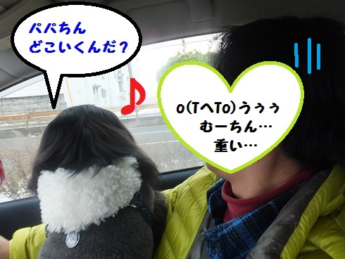 20140119mu2.jpg