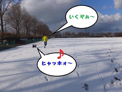 20140119mu5.jpg