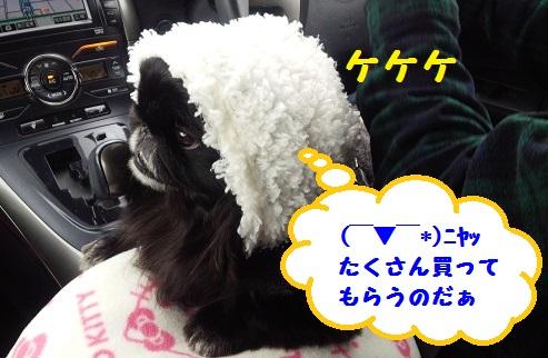 20140125mu1.jpg