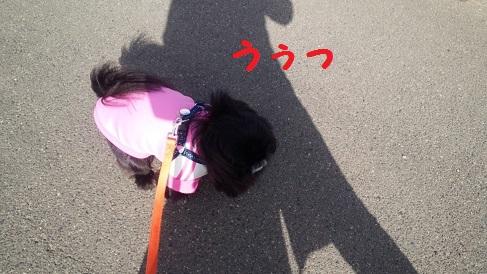 20140129mu2.jpg