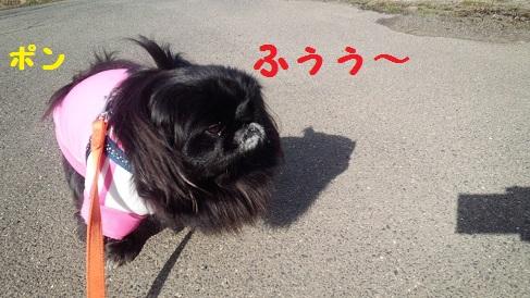 20140129mu4.jpg