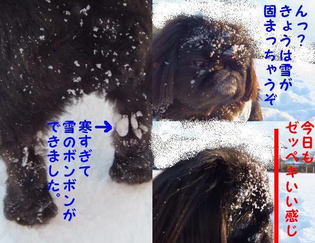 雪のボンボン
