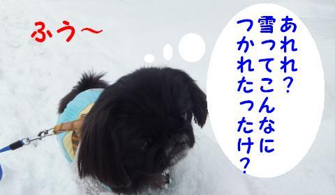 雪のさんぽ②