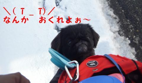雪のさんぽ④