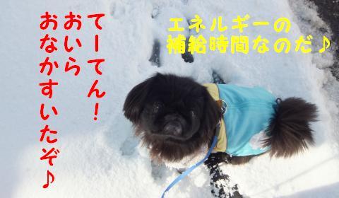 雪のさんぽ③