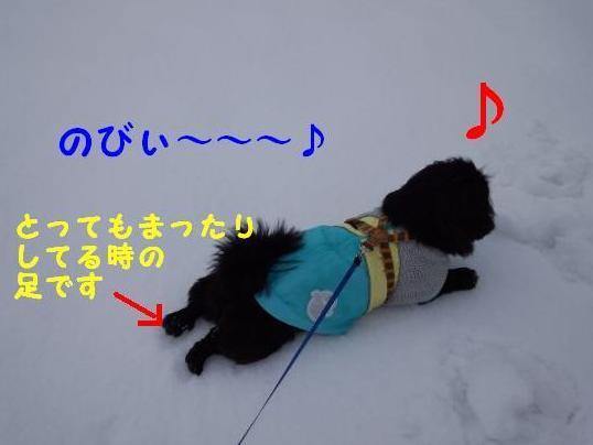 雪の上で ②