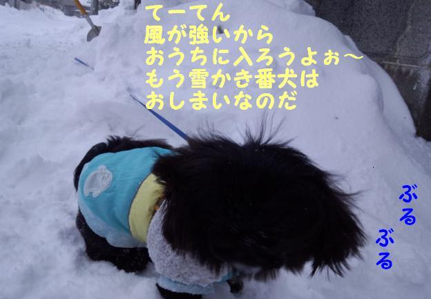 雪かき番犬 ③