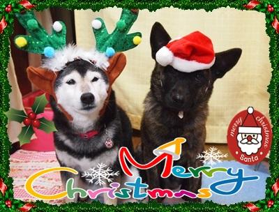 クリスマスPC248746