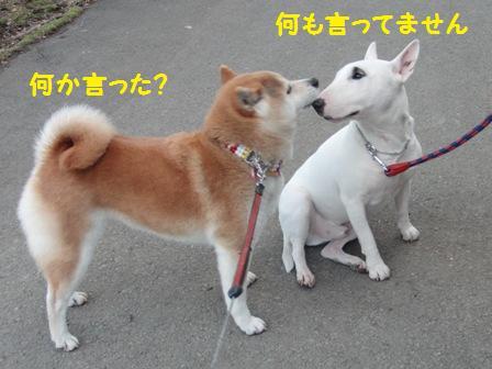 何か言った?