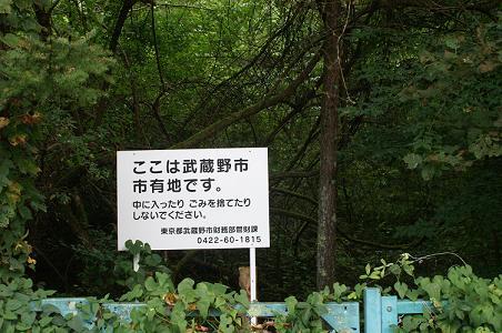100907富士高原ファミリーロッジ跡地 023