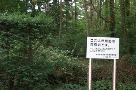 100907富士高原ファミリーロッジ跡地 021