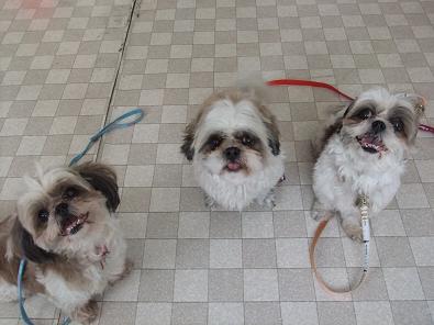 3姉妹でっす♪