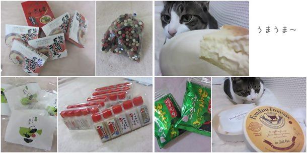 cats1_201312172015018ef.jpg