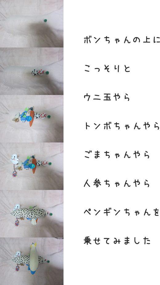 cats_20140108211800894.jpg