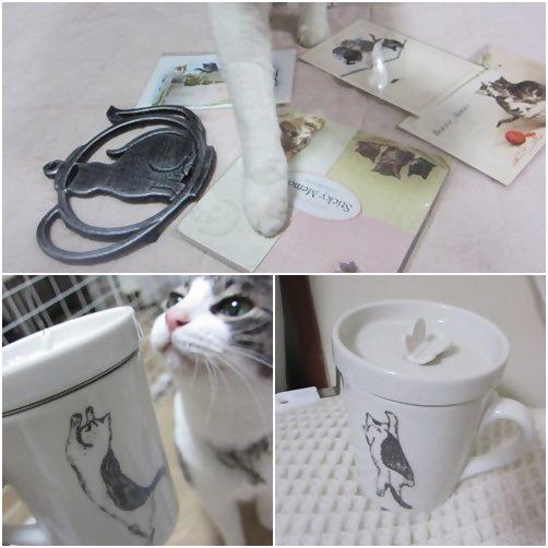 cats_20140201154442b7a.jpg