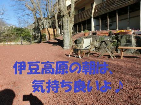 001_20130224212550.jpg