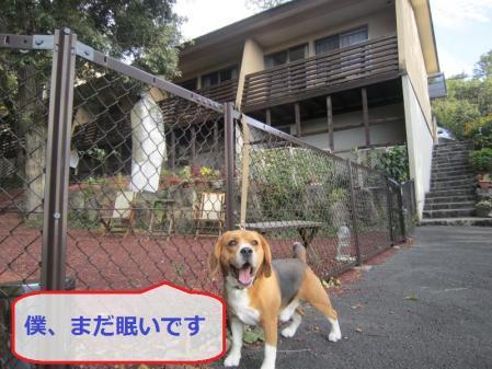 004_convert_20111019224038.jpg