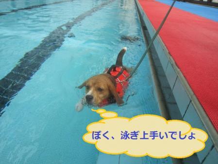 045_convert_20111018214527.jpg