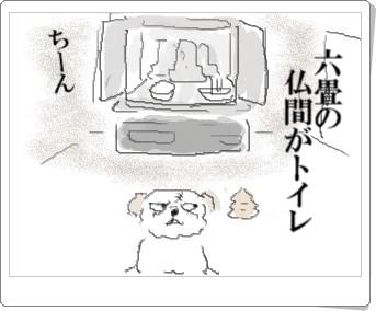 butuma2.jpg