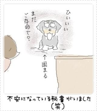 namennayo2.jpg