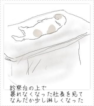 sizuka1.jpg