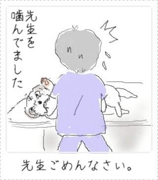sizuka3.jpg