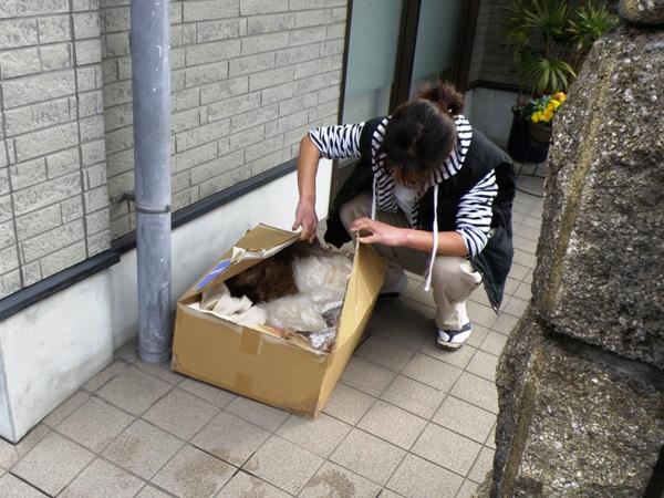 blog20110321 (103)