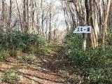 十種ヶ峰登山17