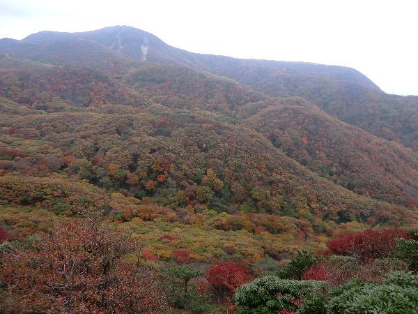中岳登頂 5