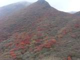 中岳登頂 10