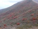 中岳登頂 21