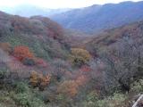中岳登頂 22