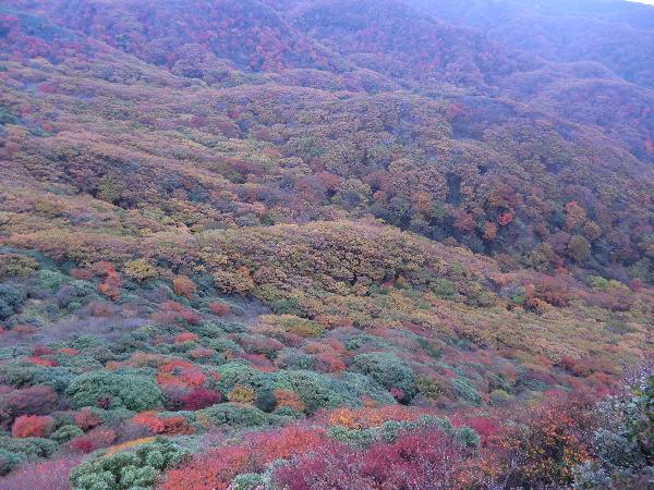 中岳登頂 23