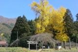 神角ルート案内2