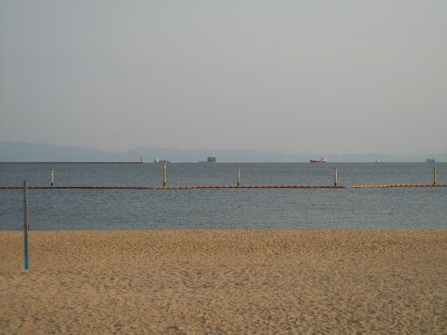 DSCN0203.jpg