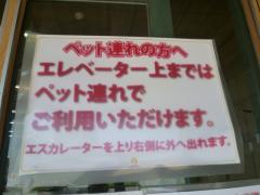 P1020850_20111010155659.jpg