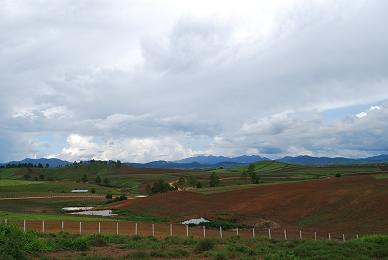 大規模農場