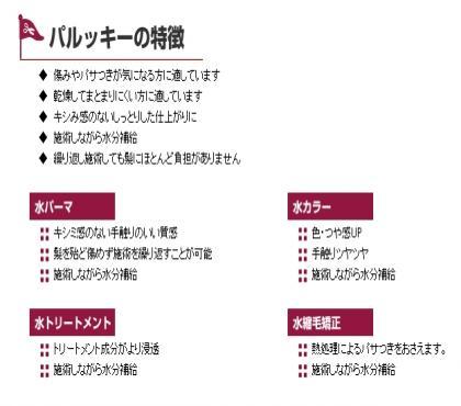 繝代Ν繝・く繝シ_convert_20110303191130