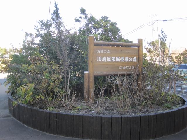 20110122_000.jpg