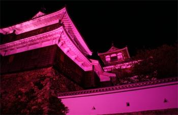 福知山城ライトアップ