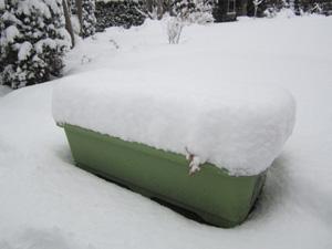 雪2012②